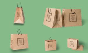 购物用纸质手提袋图案应用效果模板