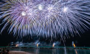 夜空中的炫丽节日烟花摄影高清图片