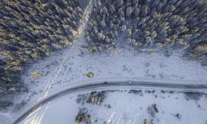 树林中穿梭的而过公路摄影高清图片