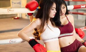 在围栏前的俩拳击美女摄影高清图片