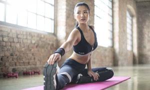 健身房里做瑜伽的美女摄影高清图片