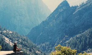 深山中的树木植被风光摄影高清图片