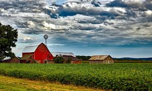 农场田地房屋自然风光摄影高清图片