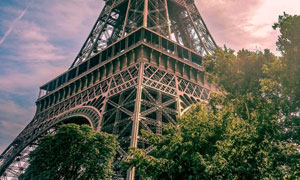 掩映在树枝中的埃菲尔铁塔高清图片