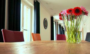 桌面上的雏菊插花特写摄影高清图片