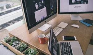 多肉植物与桌上的电脑摄影高清图片