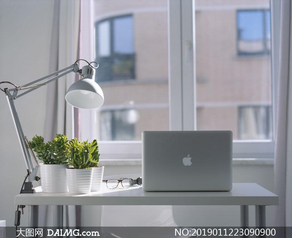 桌面上的绿植与笔记本电脑高清图片