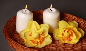 托盘里的蜡烛与黄色的鲜花摄影图片