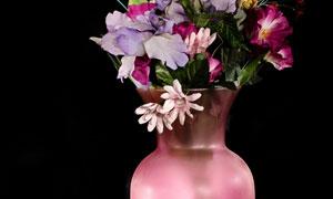 粉色花瓶中的鲜花特写摄影高清图片