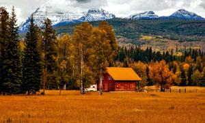 雪山脚下的木屋与树林摄影高清图片