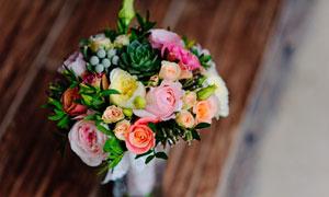 摆放在桌上的花朵特写摄影高清图片