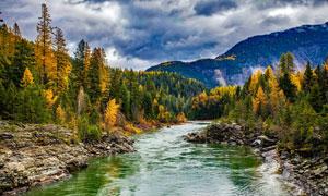 茂密树林山清水秀风光摄影高清图片