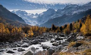 乱石河流树林雪山风光摄影高清图片