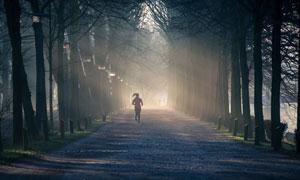 在薄雾早晨慢跑的人物摄影高清图片