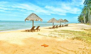 沙滩之上的遮阳茅草伞摄影高清图片