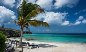 椰树白云海天一色风光摄影五百万彩票图片