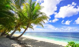 热带沙滩海景白云风光摄影五百万彩票图片