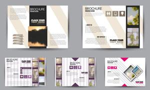 条纹元素画册页面版式设计矢量素材