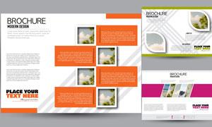 图文排版效果画册页面模板矢量素材