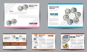 斜纹元素画册页面排版效果矢量素材