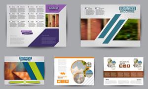 多用途的画册内页封面设计矢量素材