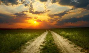 夕陽下的田園道路攝影圖片