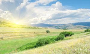 清晨田园山坡美丽景色摄影图片