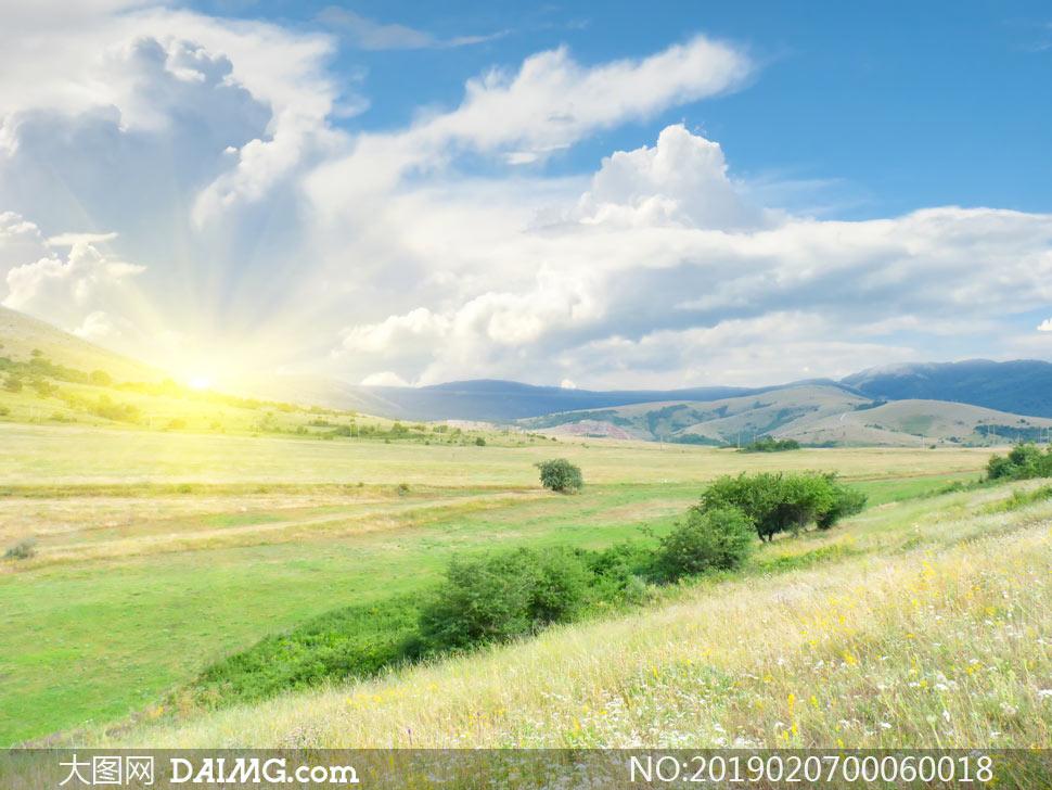 高清图片 自然风景 > 素材信息                          清晨阳光下