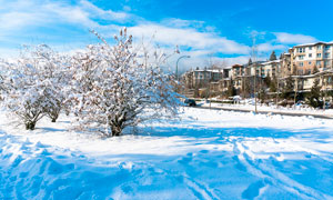 冬季城市美丽的雪景摄影图片