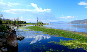公园中的湖泊美景摄影图片