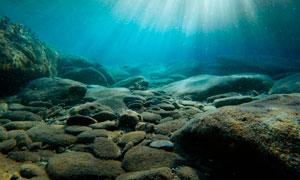 阳光下的海底世界美景摄影图片