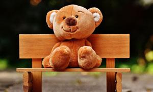 木椅上的毛绒玩具小熊摄影高清图片