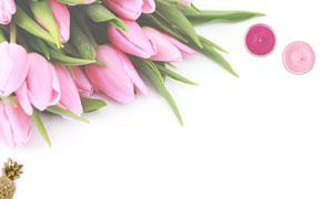 蜡烛与几朵郁金香鲜花摄影高清图片