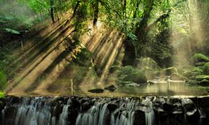 神秘气息山间树林瀑布风光高清图片