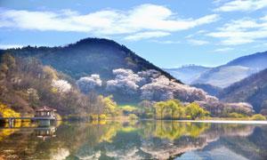 诗情画意般的湖光山色摄影高清图片