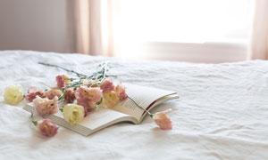 床上的书本与花朵特写摄影高清图片