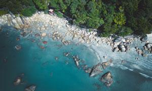 海边乱石与茂密的树林摄影高清图片