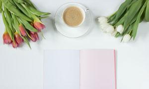 郁金香鮮花與空白的記事本高清圖片