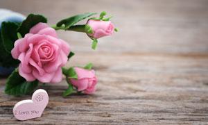 木板上的塑料材质玫瑰摄影高清图片