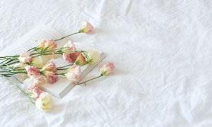 散落在书本上的几朵花摄影高清图片