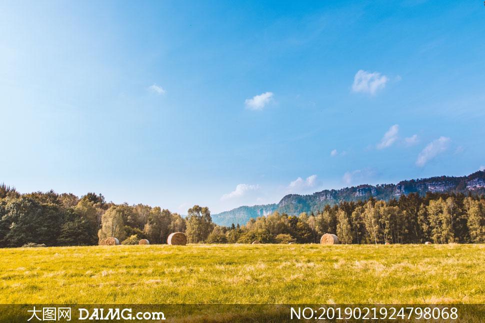 蓝天白云大山树丛草地摄影高清图片