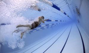奋力向前游的游泳人物摄影高清图片