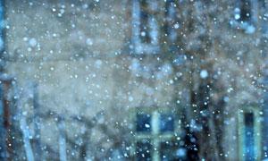 飘在天空中的雪花特写摄影高清图片