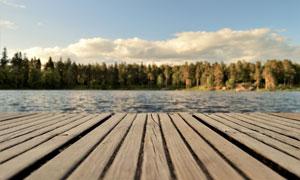 蓝天白云树林湖畔风光摄影高清图片