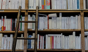在旁边搭了梯子的书架摄影高清图片