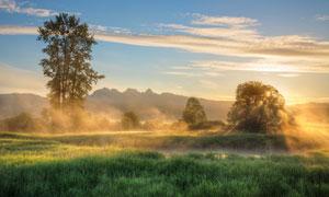 雾气笼罩中的山峦草地摄影五百万彩票图片