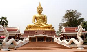 金佛与在寺庙前的两座龙雕高清图片