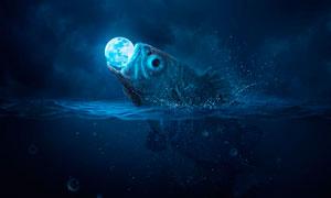 超現實主義的魚吞月場景PS教程素材