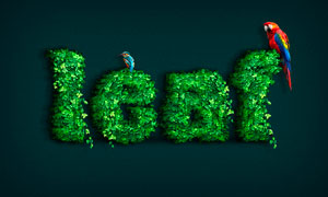 綠葉裝飾的藝術字設計PS教程素材