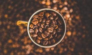 在杯子里的咖啡豆特寫攝影高清圖片